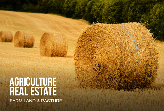 Farm Land and Pasture - round hay bale