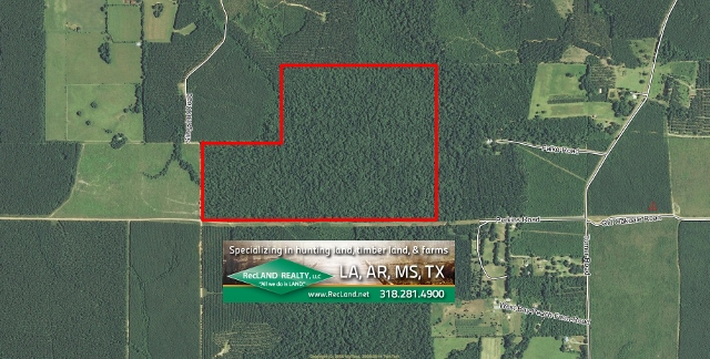 LA - Allen - Mixed Timberland & Hunting Tract