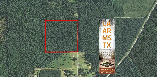 LA - Beauregard - Timberland Tract with Home Site Potential & Minerals