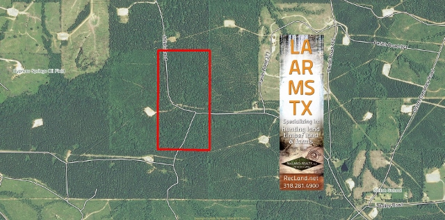 LA - Bienville - Mature Timber Tract with Great Access for Rural Home Site or Recreation - PENDING