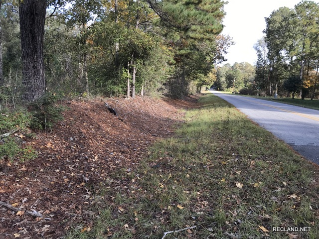 LA - Caldwell - Wooded Tract for Home site