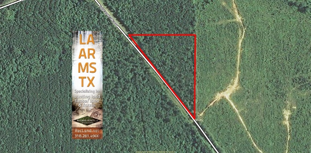 LA - Caldwell - Wooded Rural Home Site Tract