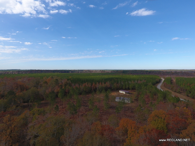 LA - Caldwell - Hunting Tract on Castor Creek with New Camp House