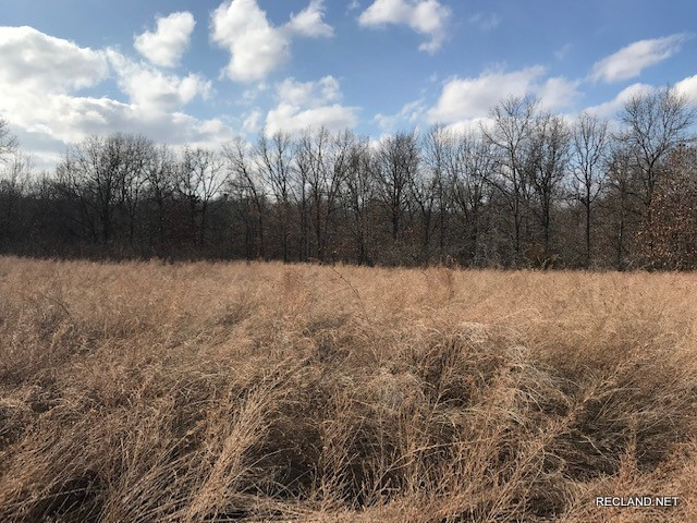 MO - Camden - Small Wooded Tract for Home Site