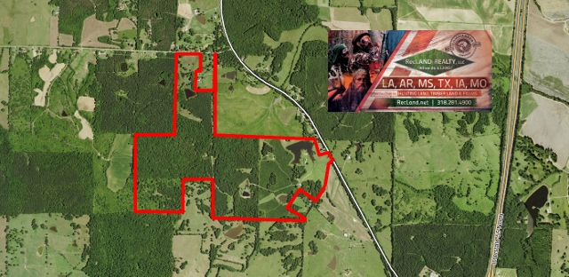 390 ac - Mississippi Land for Sale, Acreage, Timberland, Real Estate