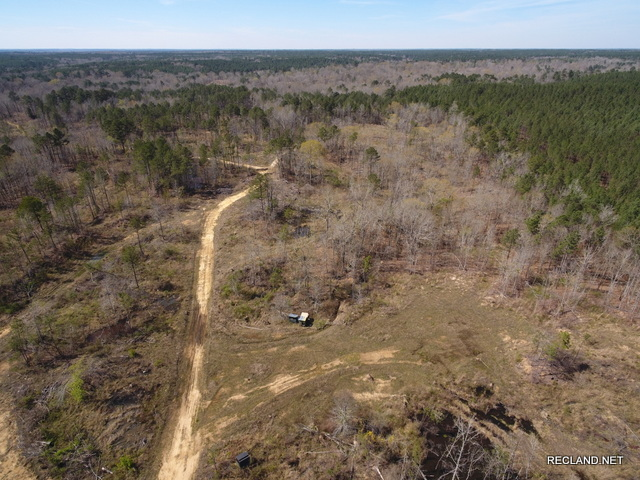 LA - Catahoula - Tract for Hunting or Large Acreage Home Site near Harrisonburg