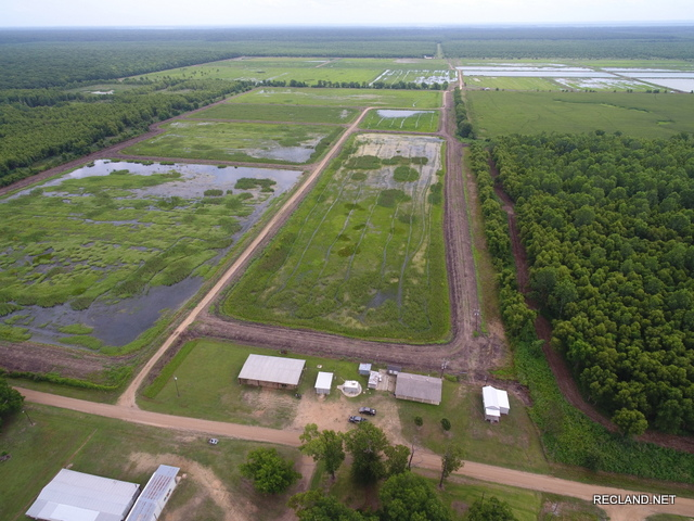 LA - Concordia - Duck & Deer Hunting with Camp and Crawfish Farm Income