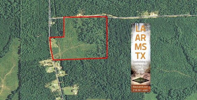 AR - Cleveland - Wooded Tract with House or Camp