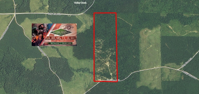 AR - Drew - Timberland Hunting Tract