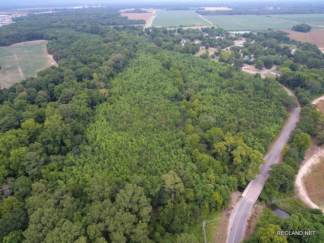 LA - Franklin - Wooded Tract on Edge of Town in Winnsboro