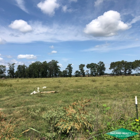 LA - Franklin - Pasture with Good Access