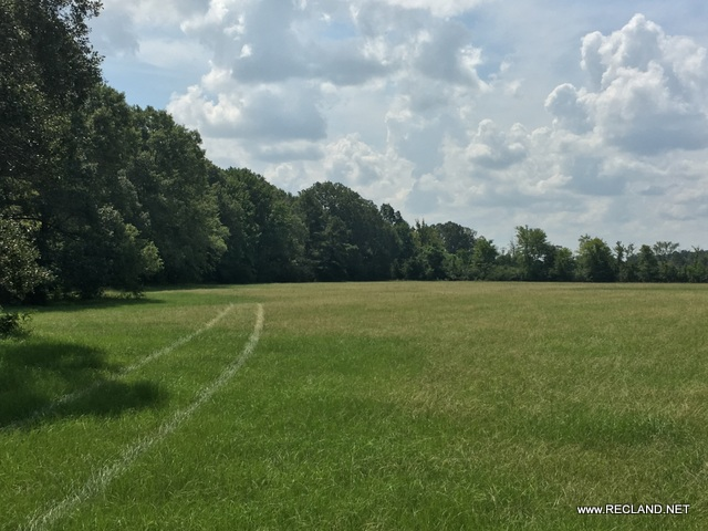 LA - Franklin - Pasture with Home Site Potential Near Winnsboro