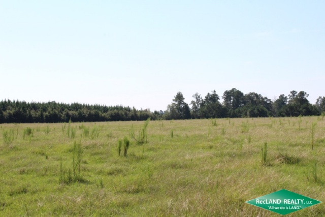 TX - Hardin - Ranch and Home near Big Thicket National preserve